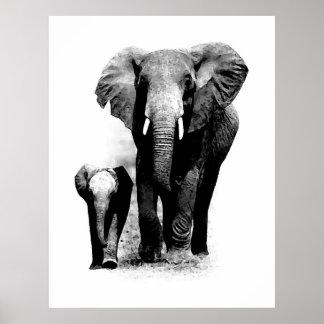 Affiche d éléphant de BW et d éléphant de bébé