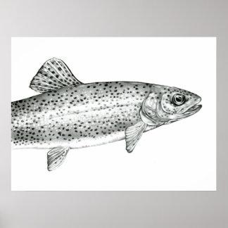 Affiche de dessin de truite arc-en-ciel posters