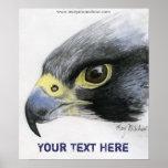 Affiche de faucon pérégrin
