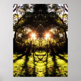 Affiche de forêt d'AURUS de DMT '