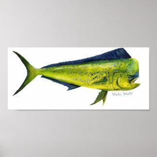 Affiche de poissons de Mahi-Mahi Posters