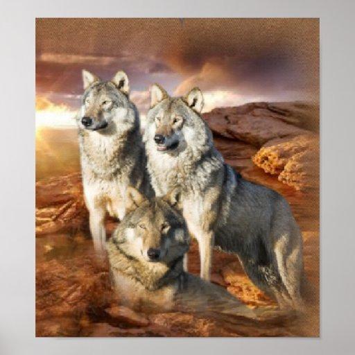 Affiche de trio de loup