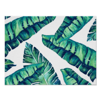 Affiche fascinante tropicale 16x12 posters