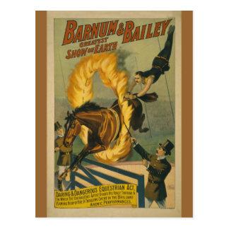 Affiche flamboyante de cirque de cheval carte postale