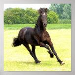 Affiche galopante de cheval