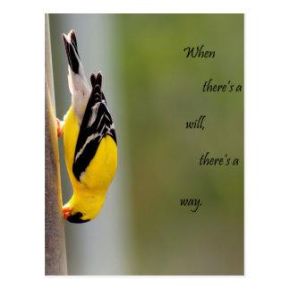 Affiche jaune d'oiseau cartes postales