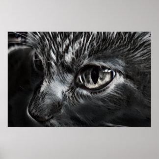 Affiche noire et blanche de chat posters