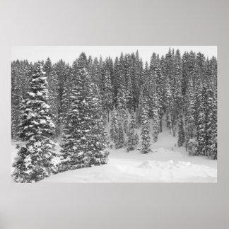 Affiche noire et blanche de photo de forêt d'hiver