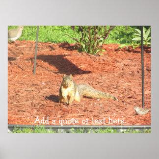Affiche personnalisée par écureuil drôle poster