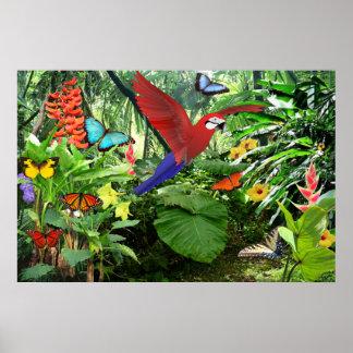 Affiche tropicale de forêt tropicale