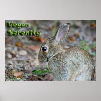 Affiche végétalienne de lapin de sérénité posters