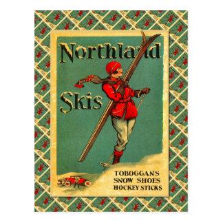 Affiche vintage de ski, skis de la terre du nord carte postale