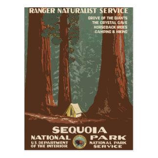 Affiche vintage de voyage de parc national de carte postale