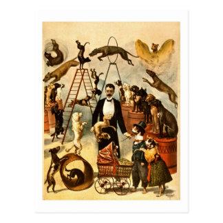 Affiche vintage qualifiée d'acte de cirque de carte postale