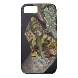 Africain Red Eye Treefrog, Leptopelis Coque iPhone 8/7