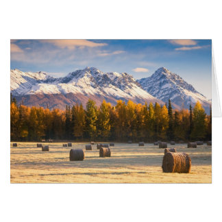 Agriculture de l'Alaska Carte De Vœux