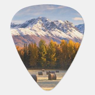 Agriculture de l'Alaska Onglet De Guitare