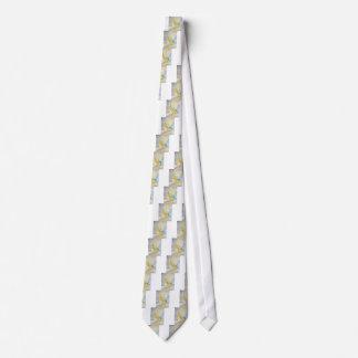 Agrume et toile cravates