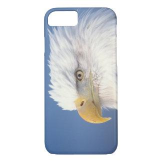 aigle chauve, leuccocephalus de Haliaeetus, Coque iPhone 8/7
