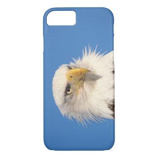 aigle chauve, leucocephalus de Haliaeetus, fin, Coque iPhone 7