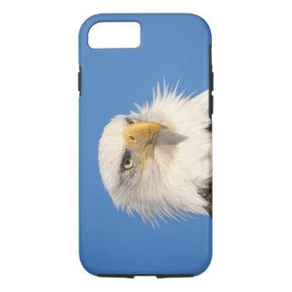 aigle chauve, leucocephalus de Haliaeetus, fin, Coque iPhone 8/7