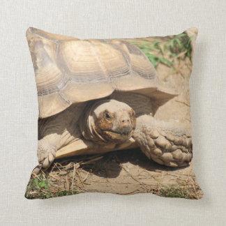 Aile du nez Aldabra Coussin