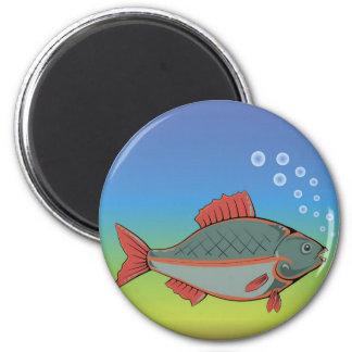 Aimant 17fish