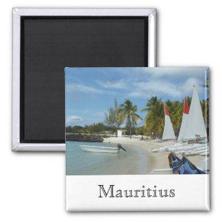Aimant À la plage de Maurice