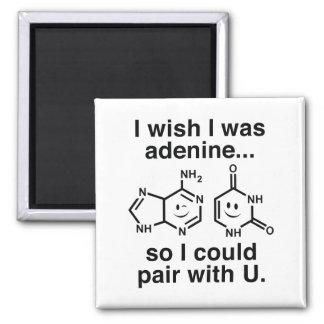 Aimant Adénine