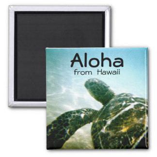 Aimant Aloha tortue de mer d'Hawaï