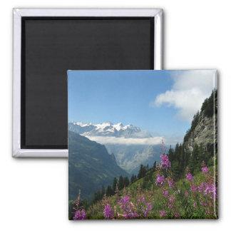 Aimant Alpes, Suisse