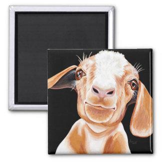 Aimant Amour de chèvre