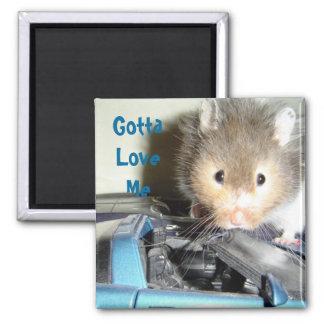 Aimant Amour de hamster