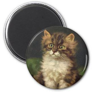 Aimant Animaux de compagnie vintages, chaton rayé mignon