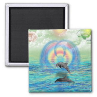 Aimant Augmentation de dauphin