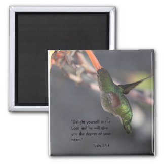 aimant avec le colibri - enchantez dans le