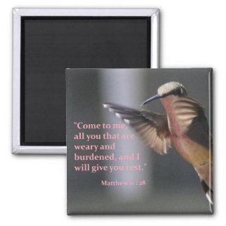 aimant avec le colibri - reposez-vous dans le