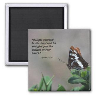 aimant avec le papillon - enchantez-vous dans le