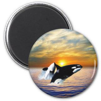 Aimant Baleines au coucher du soleil