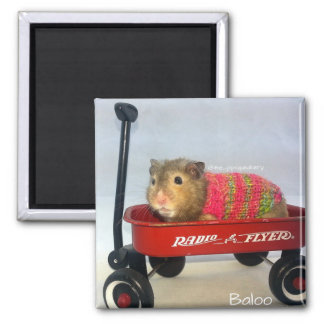 Aimant Baloo dans son chariot rouge