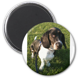 Aimant Basset Hound adorable Snoopy