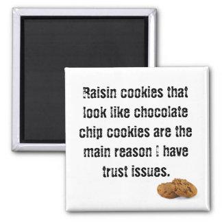 Aimant Biscuit de raisin sec qui ressemble à la puce de