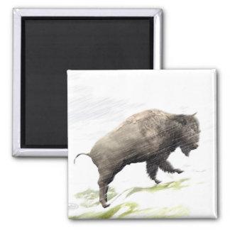 Aimant Bison dans la tempête d'hiver