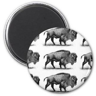 Aimant bison dans les rangées