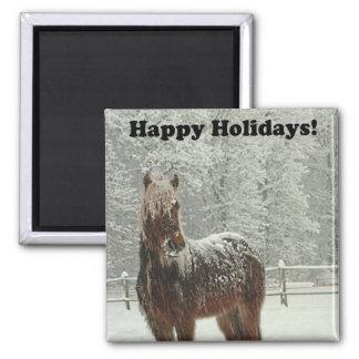 Aimant Bonnes fêtes photo islandaise de cheval