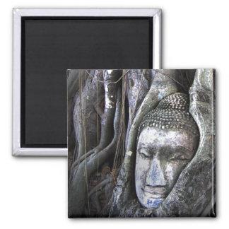 Aimant Bouddha et la photographie de la Thaïlande de