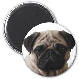 Aimant carlin Pug