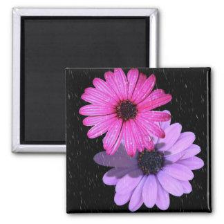 aimant carré de goutte de pluie de fleur