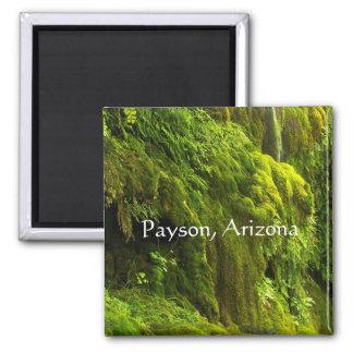 Aimant Cascade en vert dans Payson, Arizona,