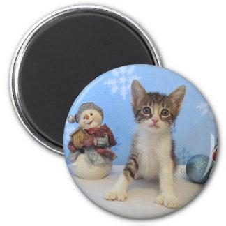 Aimant Chat, chaton, Noël, délivrance, photo